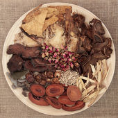 Chinese Herbal Medicine — Foto Stock