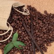 Vanilla Coffee — Stock Photo #24621379