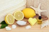 Lemon Spa Beauty Treatment — Stock Photo
