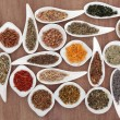 Herb and Spice Sampler — Stock Photo #25404493