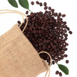 coffee beans — Stock Photo #25404969