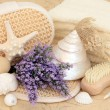 Lavender Skincare — Stock Photo #26309221