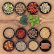 Stock Photo: Spice and Herb Sampler