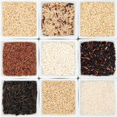 Rice Grain Varieties — Stock Photo