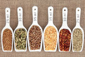 Spice Measurement — Stock Photo