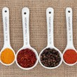 Spice Quantities — Stock Photo