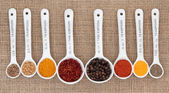 Spice Quantities — Stock Photo