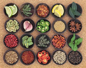 Food Seasoning Sampler — Stock Photo