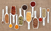 Spice Measurement — Stock Photo