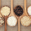 Rice Varieties — Stock Photo