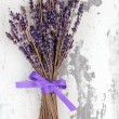 Stock Photo: Dried Lavender Flowers