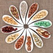 Nut Sampler — Stockfoto