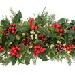 Stock Photo: Christmas Florand Fauna