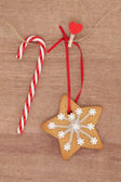 Gingerbread Cookie — Stockfoto