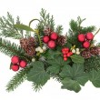 Christmas Decorative Display — Foto de stock #29968435