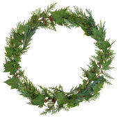 Winter Wreath — Stock Photo