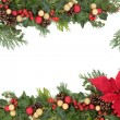 Poinsettia Floral Border — Stock Photo