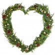 Natural Christmas Wreath — Stock Photo #30238927