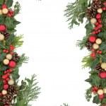 confine di Natale — Foto Stock
