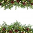 Stock Photo: Christmas Greenery Border