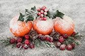 Christmas Fruit Display — Stock Photo