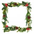 Stock Photo: Festive Border