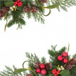 Decorative Christmas Border — Stock Photo