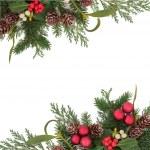 Decorative Christmas Border — Stock Photo #31133475