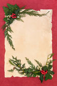 Holly and Mistletoe Border — Stock Photo