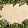 Seasonal Border — Stock Photo #31514375