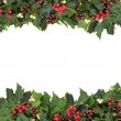 Christmas Floral Border — Stock Photo