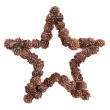 Christmas Star Decoration — Foto Stock