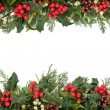 Stok fotoğraf: Christmas Holly Border