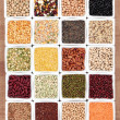 Stock Photo: Pulses Sampler