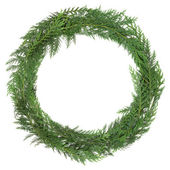 Cedar Cypress Wreath — Stock Photo