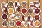 Traditional Chinese Medicine — Stock Photo