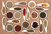 Herb Tea Sampler — Stockfoto