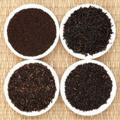 Tea Leaf Sampler — Foto Stock