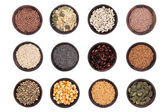 Seed Selection — Stock Photo