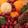 Christmas Fruit and Nuts — Stock Photo #3527215