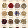 Natural Herbal Medicine — Stock Photo