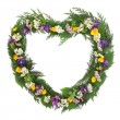 Stock Photo: Wild Flower Wreath