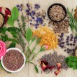 Natural Herbal Medicine — Stock Photo #40815245
