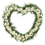 Hawthorn Blossom Wreath — Stock Photo