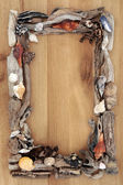Driftwood on Oak Border — Stock Photo