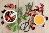 Love Potion Herbs — Stock Photo