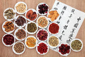Chinese Herbal Health — Stock Photo