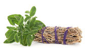 Sage Smudge Stick — Stock Photo
