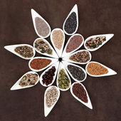 Seed Food Platter — Stock Photo