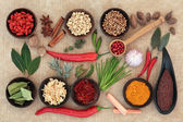 Culinary Herbs and Spices — Stock Photo